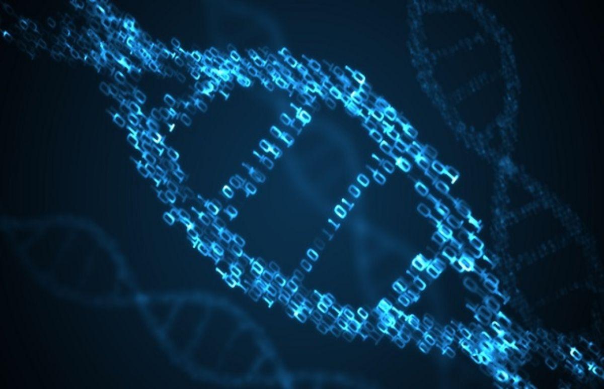 Les tests ADN à visée généalogique ont la cote sous le manteau