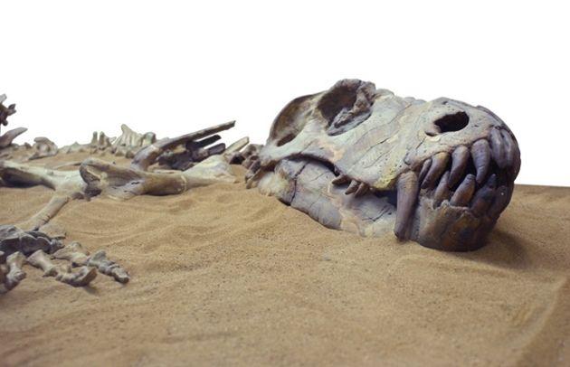 Un supercalculateur simule l'impact de l'astéroïde à l'origine de l'extinction des dinosaures