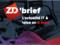 Chasse aux Nazis sur le Web, Snowden contre les GAFA, stocker sur du verre ; c'est le 10ème ZD Brief saison 2
