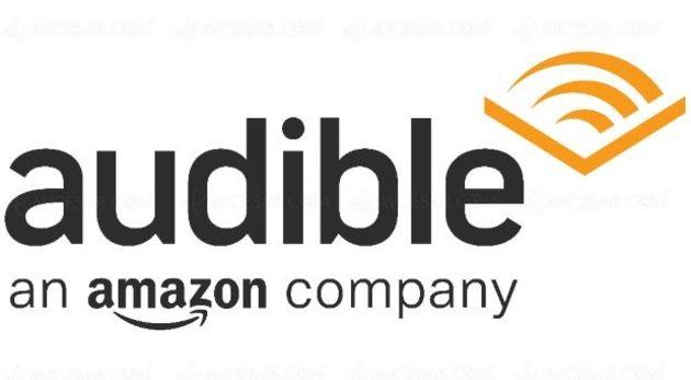 Audible Amazon Poursuivi Par Les Editeurs Pour Son Systeme