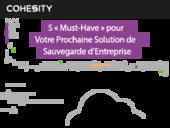 5 « Must-Have » pour Votre Prochaine Solution de Sauvegarde d'Entreprise