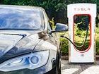 Tesla: un chercheur livre le mode d'emploi pour pirater une ModelX en quelques minutes
