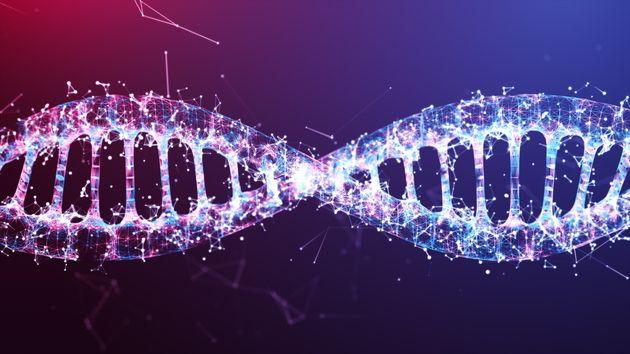 Des chercheurs de Nvidia et de Harvard utilisent l'IA pour étudier les cellules