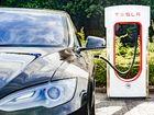 La Tesla Model3 ne perd pas de vue le conducteur