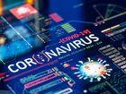 Le ministère des Armées déploie un moteur de recherche sur la Covid-19