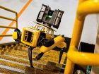 Ford va utiliser des chiens robots pour scanner ses usines