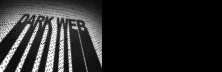 Un hébergeur du dark Web piraté, 7 600 sites mis hors ligne