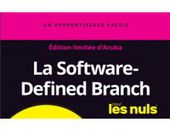 La SoftwareDefined Branch pour les nuls