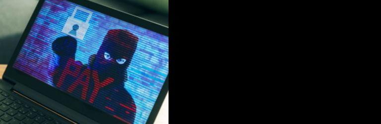 Ransomware : La responsabilité des intermédiaires pointée du doigt au Sénat